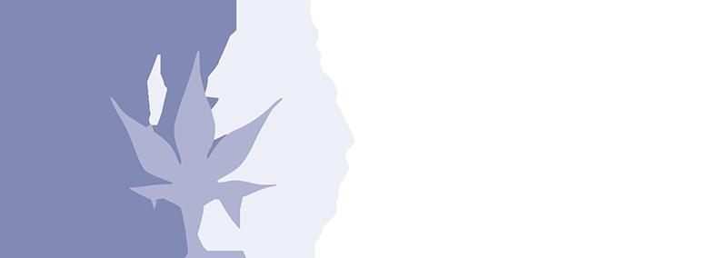 iffd.org
